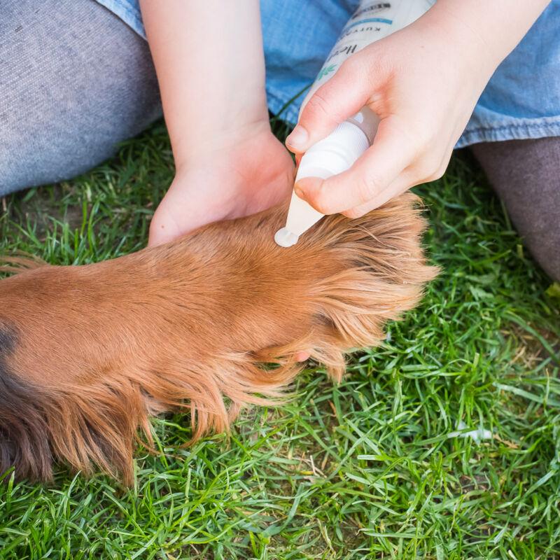HerbArting kutyamancsmosó sampon 250 ml